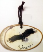 COLORAdo eagle in flight ornament