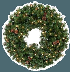 black forest pine wr021 22 25 26 27
