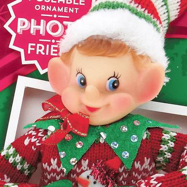 holiday selfie elfie