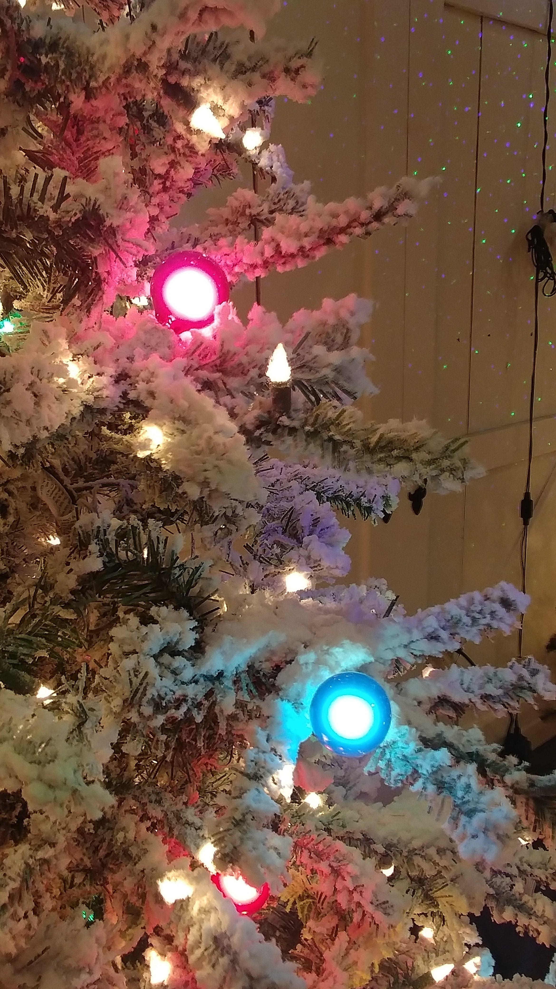 Flocked Artificial Christmas Trees Album Christmas Tree