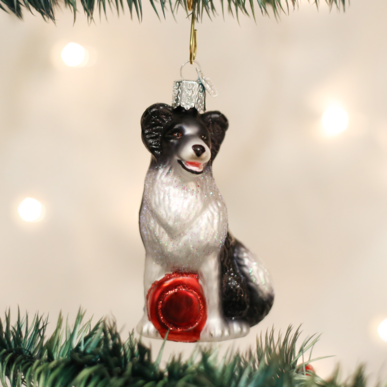 Old World Christmas Border Collie Blown Glass Ornament