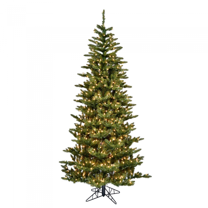 Medium Profile Fraser Fir Christmas Tree